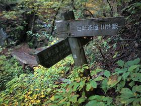 沢沿いコースと林道コースの合流地点