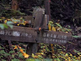 沢沿いコースと林道コースの分岐地点