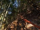登山口付近の急坂2