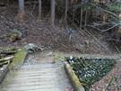 芥場峠から御岳山に続く平坦な遊歩道