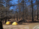 笠取小屋のテント場