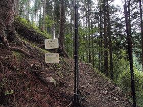 鹿よけの網