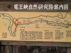 龍王峡自然研究路案内図