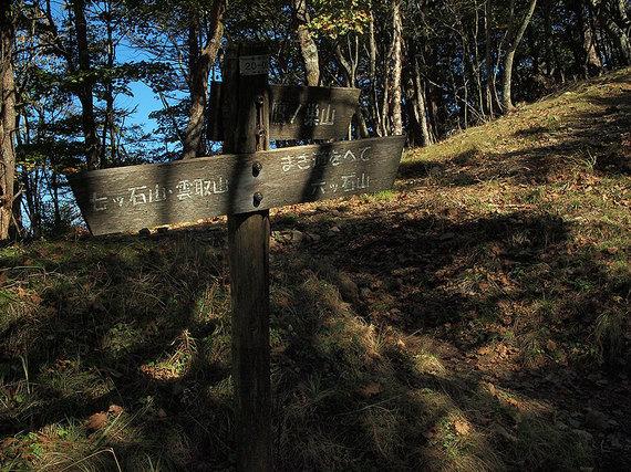石尾根の鷹ノ巣山直登とまき道の分岐地点