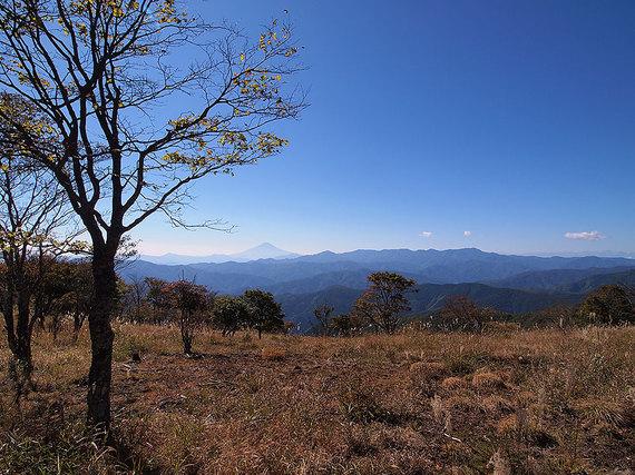 鷹ノ巣山山頂直下の草原からの展望2