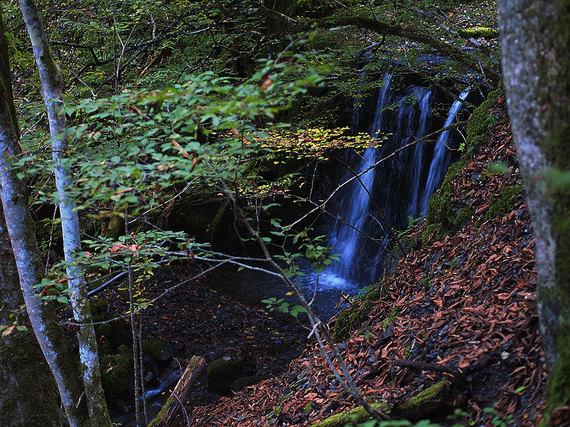 堰堤から落ちる滝