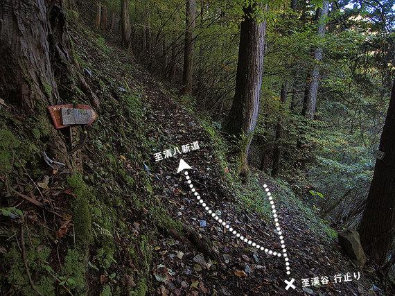 小河内峠方面の分岐地点