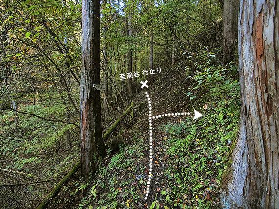 奥多摩湖から歩いた時の目線で見る小河内峠方面の分岐地点