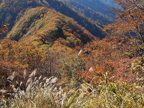 ソーヤノ丸デッコから望む付近の紅葉