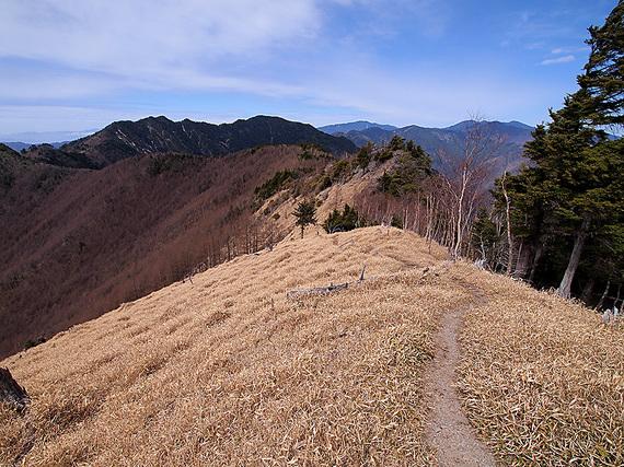 東仙波山頂から歩いてきた稜線