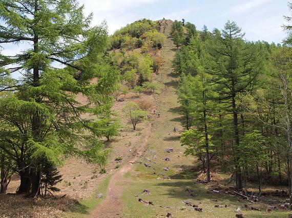 登山道より笠取山を望む