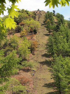 笠取山の直登道