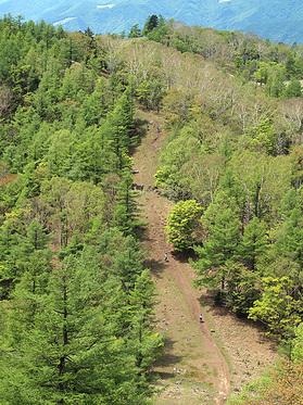 笠取山の直登道を見下ろす