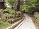 笠取小屋脇の林道