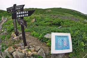 探勝歩道最高地点方面と本白根山展望所方面の「鞍部の分岐」