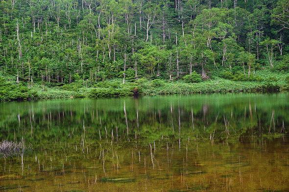 静寂の鏡池