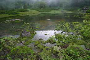 鏡池の湖面の様子