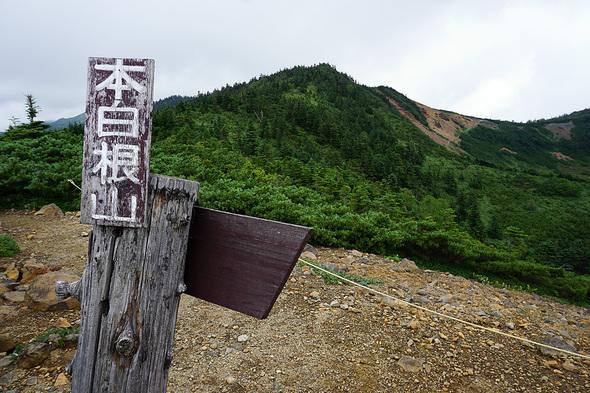 本白根山遊歩道最高地点から望む本白根山