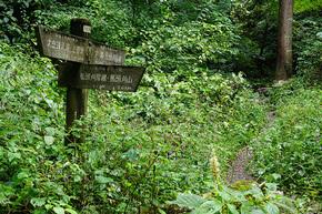登山口付近の道標