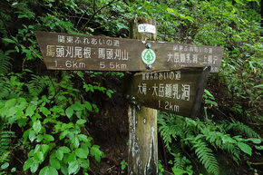 大滝付近の道標