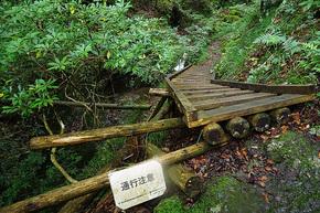 大滝上部の遊歩道