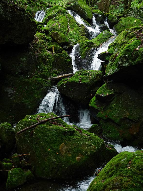 絵になる小滝