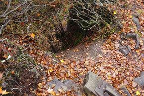 登山道脇の危険な穴ぼこ