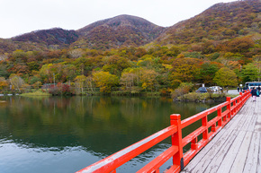啄木鳥橋と紅葉