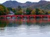 秋霧に色づく赤城山