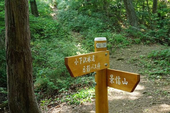 小下沢林道からの一般登山道との合流地点