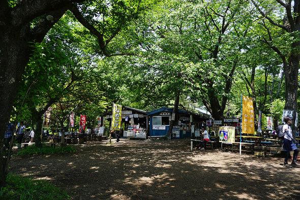 緑豊かな小仏城山の売店広場