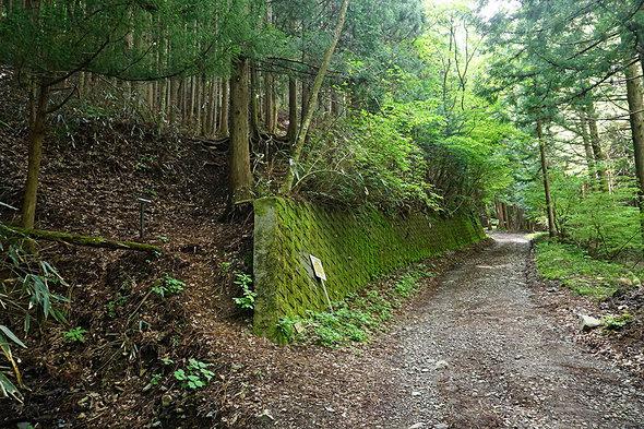 道志の森キャンプ場内の鳥ノ胸山登山口
