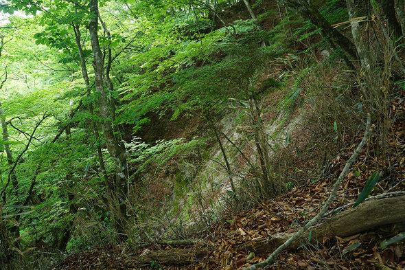 山道から見る谷底の入口