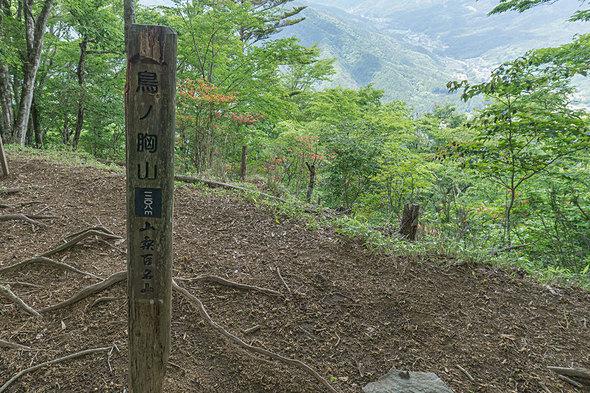 鳥ノ胸山(とんのむねやま)山頂