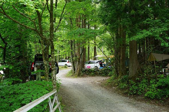 通路の左右はフリーのテントサイト