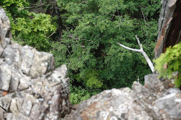 鶏冠山(黒川山)山頂の絶壁から見下ろす