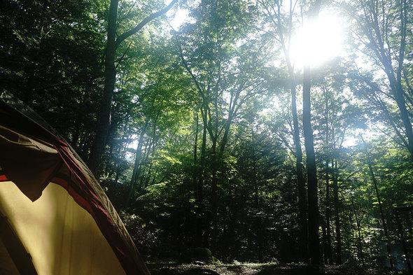 朝陽が木漏れ日となって降り注ぐ一の瀬高原キャンプ場