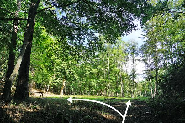 一の瀬高原キャンプ場の第三テント場入口からの風景
