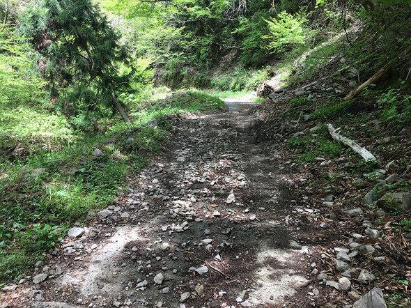 林道御岳線の土砂崩れの様子(駐車スペース手前50m位の場所)
