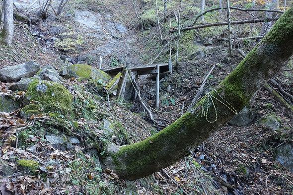通行禁止の木橋