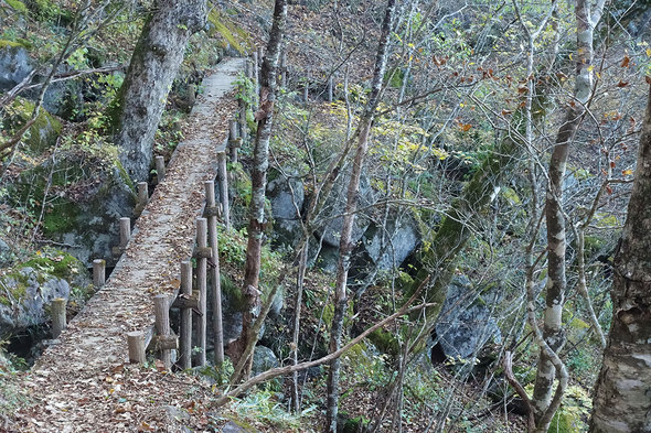 谷間にかかる橋