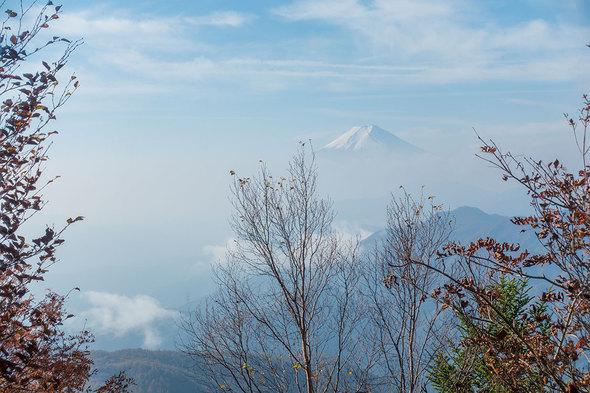 山道からの富士山1