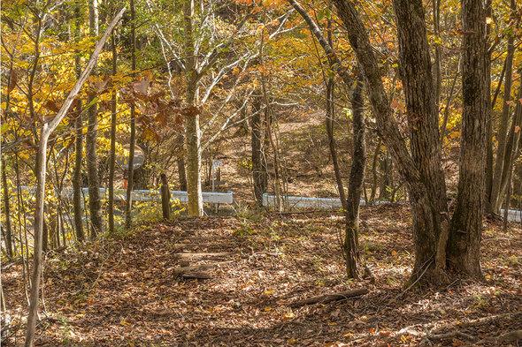 林道が横切る
