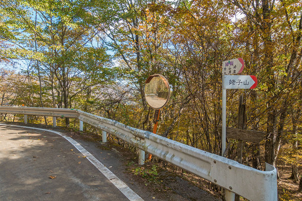 林道奈良子線を横断して姥子山へ