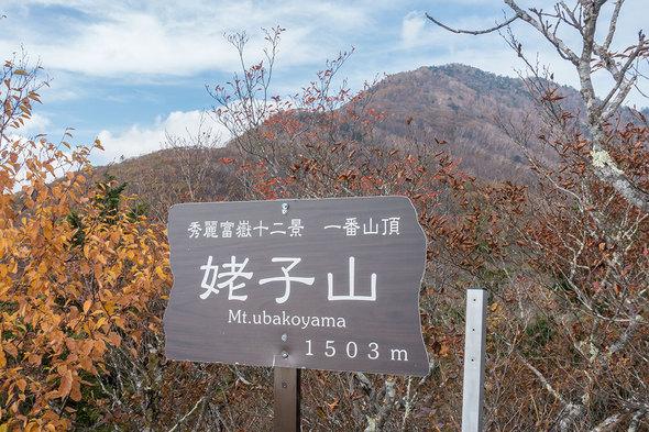 姥子山 一番山頂