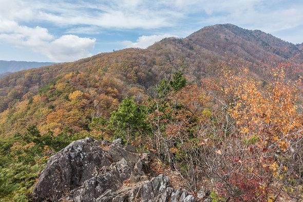 姥子山から雁ケ腹摺山を望む