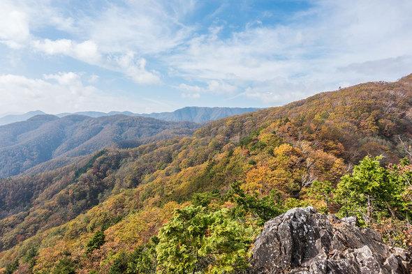 姥子山からの眺望