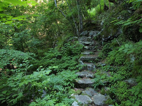 天狗滝に向かう登山道