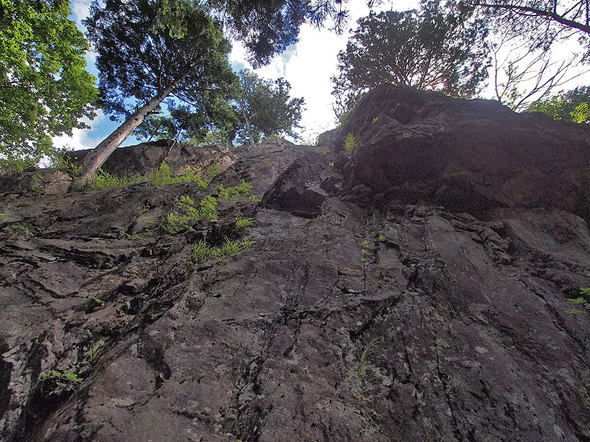 馬頭刈尾根からつづら岩を見上げる