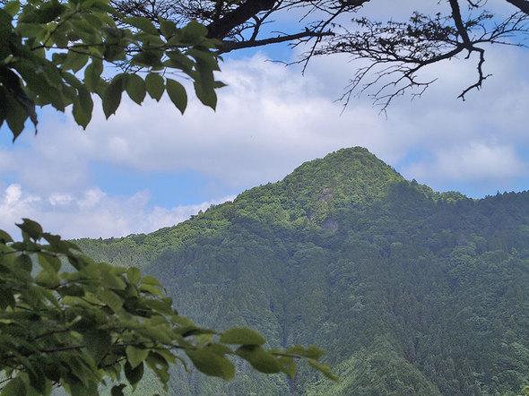 馬頭刈尾根から大岳山を望む